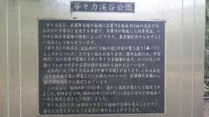 DSC_2106-1