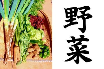食育|Learning through food